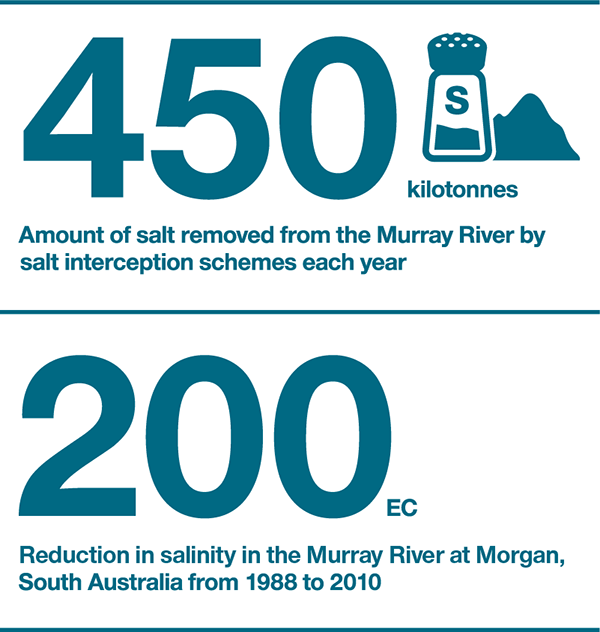 Amount of salt removed from the Murray River by salt interception schemes each year: 450 kilotonnes. Reduction in salinity in the Murray River at Morgan, South Australia from 1988 to 2010: 200 EC.